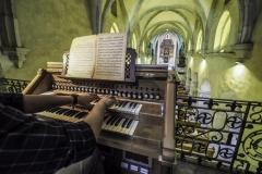 day3-Concertul-de-orgă-la-Biserica-din-Sebes_1